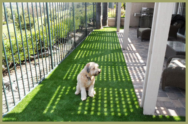 for pets  synthetic grass