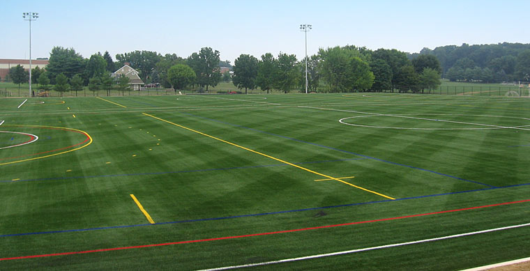 sports field synthetic grass